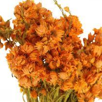 Truskawki Suszone Kwiaty Pomarańcza Małe 15g