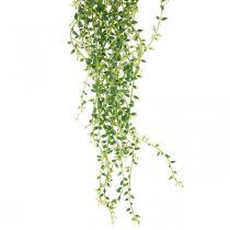 Sukulent wiszący sztuczna roślina wisząca zielona 96cm