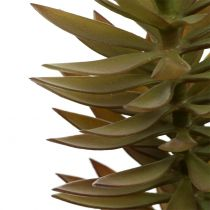 Gałązka sukulentów jasnobrązowa zielona 48cm