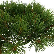 Wieniec jodłowy zielony Ø22cm