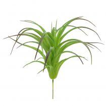 Deco Tillandsie Green 16cm 4szt.