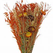 Suszone kwiaty Bukiet Pomarańczowy Mix 42cm