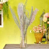 Suszone kwiaty Exotics White-Nature Mix, suszona mieszanka florystyczna