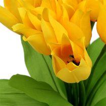 Tulipan krzew żółty H30cm