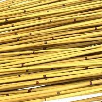 Vlei Reed 400g żółty
