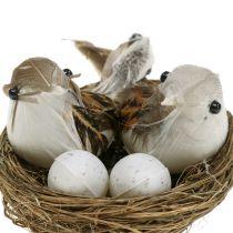 Ptasie gniazdo z jajkami i ptaszkiem 6szt.