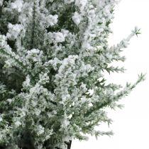 Sztuczny jałowiec w doniczce Śnieżna sztuczna roślina H47cm