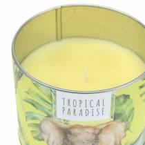 Świeca zapachowa w puszce Rainforest Yellow Ø9,5cm H8cm