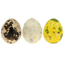 Asortyment jaj przepiórczych żółty, naturalny 3cm 72p