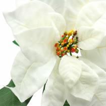 Poinsettia sztuczny kwiat biały 67 cm