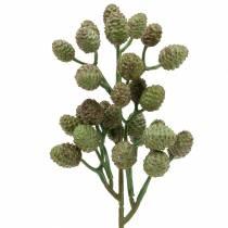 Gałązka stożkowa zielona 33cm