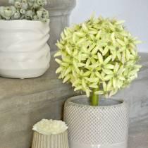 Ozdobny Allium, Kwiat Jedwabny, Sztuczna Kula Por Zielony Ø20cm L72cm