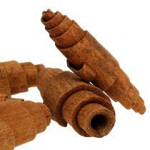 Cynamon Croissant Deco 6,5cm - 7cm 30szt.