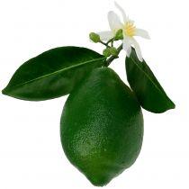Cytryny z kwiatem 9,5cm Zielone 4szt.