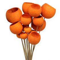 Bell Cup Mix na patyku pomarańczowy 15szt
