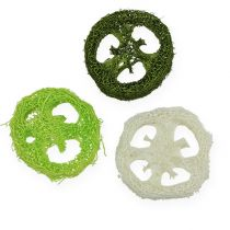 Plastry Luffy, różne rodzaje. Zielony, Biały 5-7,5cm 24szt.