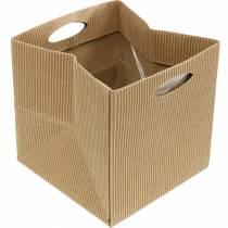 Torba papierowa 12cm Brązowa, Kremowa, Beżowa planter torba prezentowa 12szt.