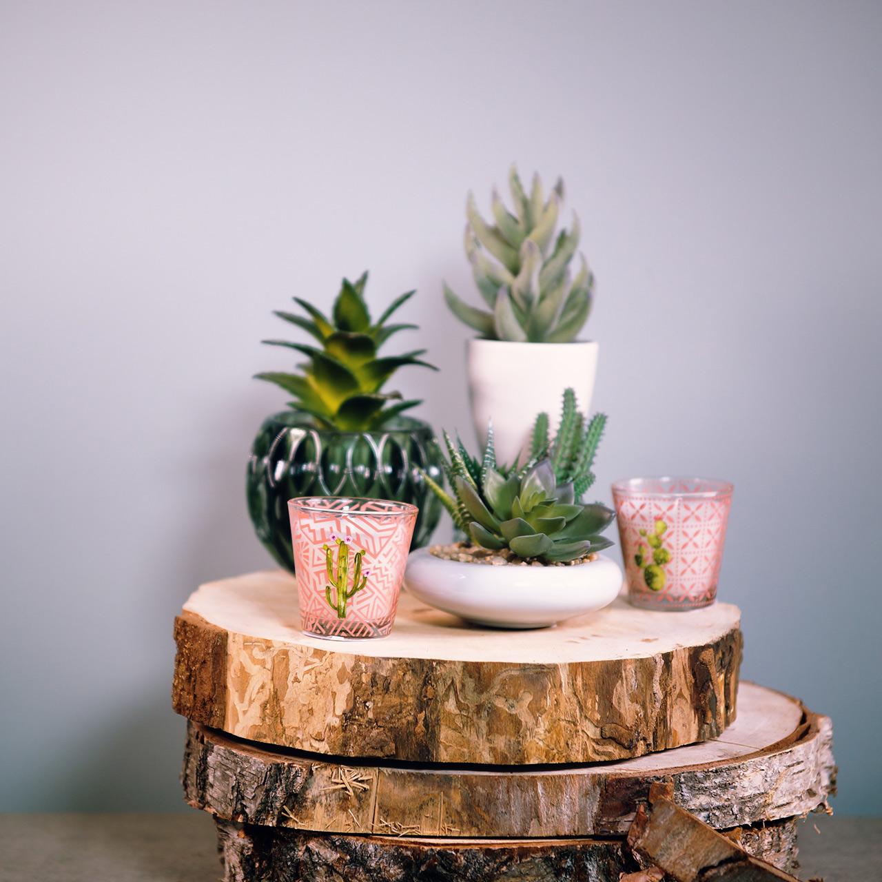 Świeca woskowa w szkle kaktus Ø6,5cm 2szt.