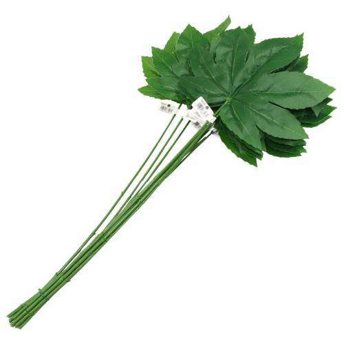 Aralia liść z łodygą zielony L61,5cm 12szt.