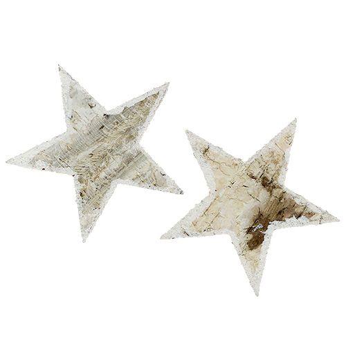 Gwiazdy brzozowe natura śnieżna 9cm 15szt.