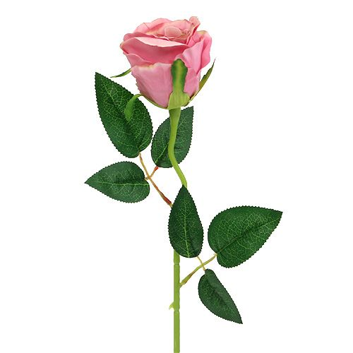 Deco Rose Ø6cm Old Pink L50cm 1szt.
