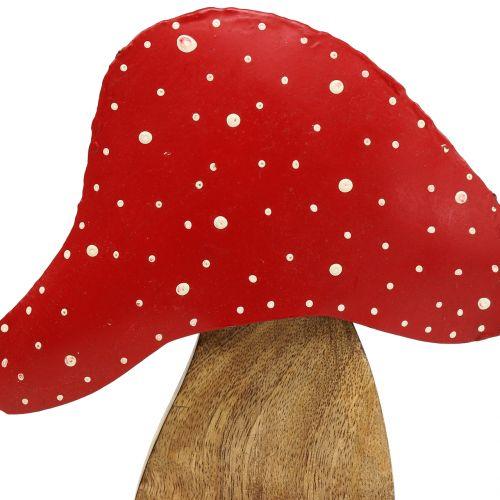 Ozdobny muchomor naturalny, czerwony 25 cm