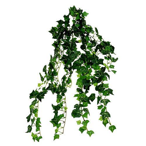 Bluszcz Vine Green 70cm