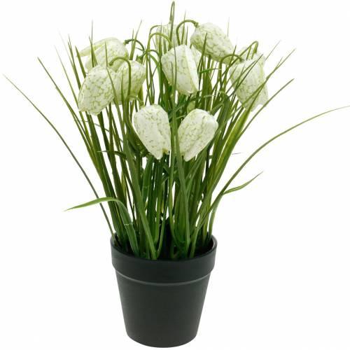 Fritillaria w doniczce, kwiat szachownicy zielono-biały, kwiat sztuczny
