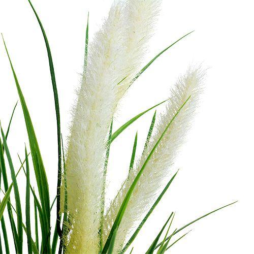 Ogoniasta trawa zielona, biała 63 cm