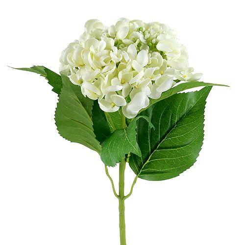 Hortensja 60cm Biała