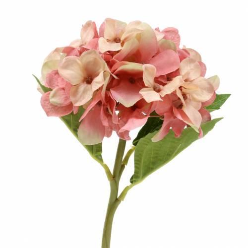 Hortensja Beżowy/Różowy 35cm