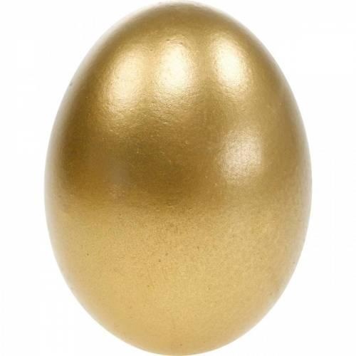 Kurczak Jajka Dmuchane Jajka Wielkanocne Dekoracje Różne Kolory 10szt