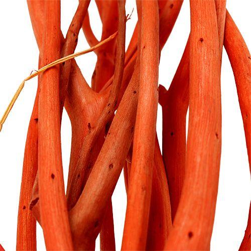 Gałęzie Mitsumata pomarańczowe 34-60cm 12szt