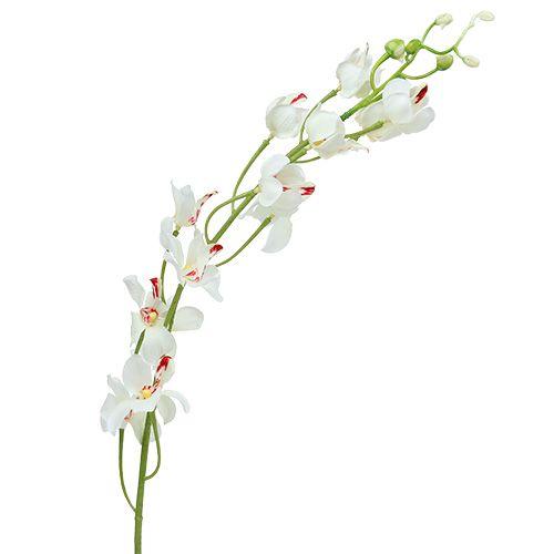 Orchidea Mokara biała 92cm 3szt.