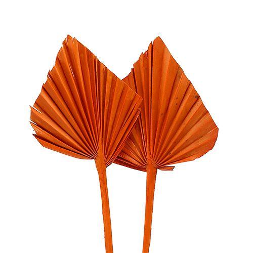 Włócznia palmowa mini pomarańczowa 100szt