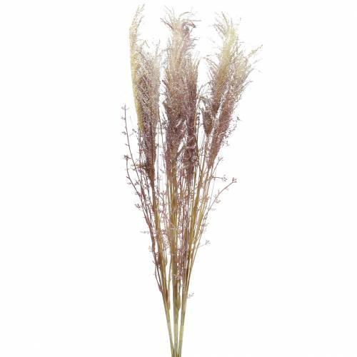 Pampasowa trawa kremowa, fioletowa Sztuczne suszone kwiaty 3szt