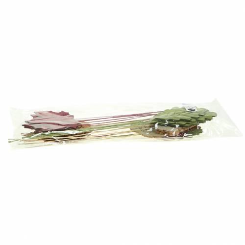 Plant Plug Leaf 8-10cm Nature/Green/Purple 24szt