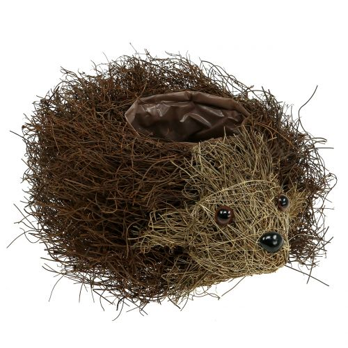 Vine Planter Hedgehog 22cm x 25cm