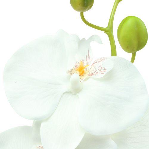 Orchid Phalaenopsis sztuczny biały 80cm