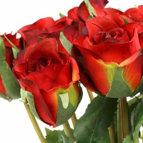 Rose Red 42cm 12szt.