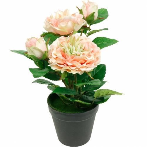 Róża dekoracyjna w doniczce, Romantyczne kwiaty jedwabne, Piwonia różowa