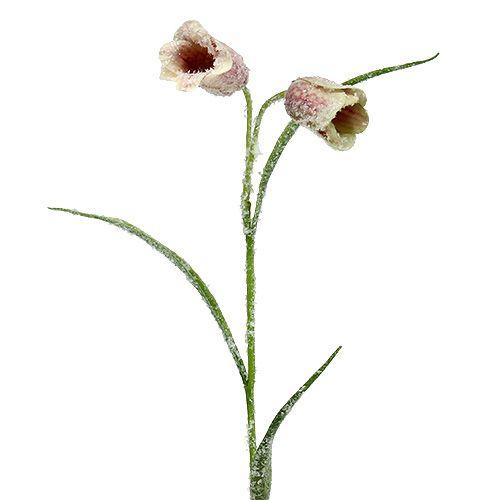 Kwiat szachowy biały różowy śnieżny L45cm 6szt.