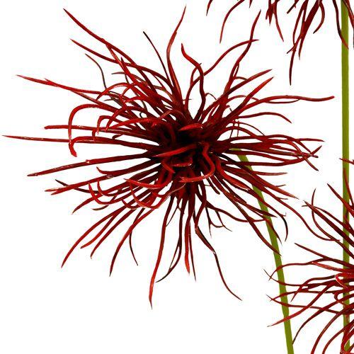 Kwiaty jedwabne Xanthium Bordeaux 64cm 4szt.