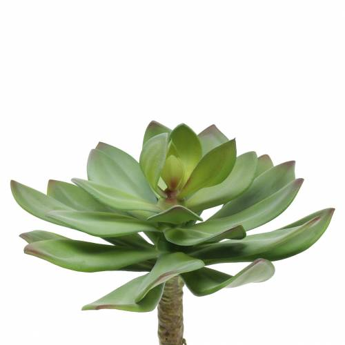 Sukulent sztuczny zielony 27cm