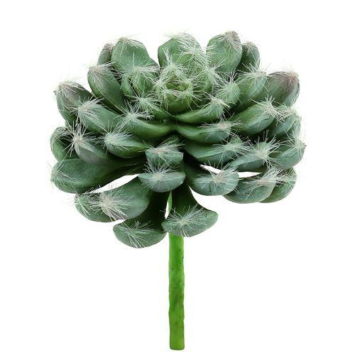 Soczysty zielony Ø8,5 cm D 13 cm