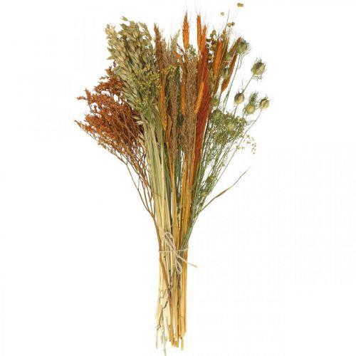Suszone kwiaty DIY Zestaw do suszenia bukietu Pomarańcza 60cm