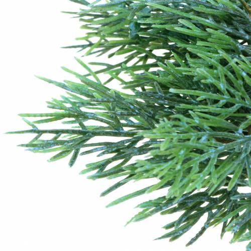 Jałowiec gałązka dekoracyjna z szyszkami zielona, niebieska płukana 25cm 2szt.