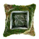 Poduszka z mchu roślinnego 25cm x 25cm 2szt